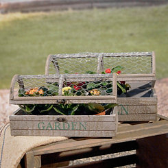 Mesh Top Growing Case Garden Planters, Set of 2