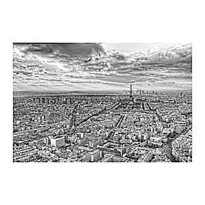 Overlooking Paris Canvas Art Print