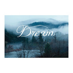 Dream Mist Canvas Art Print