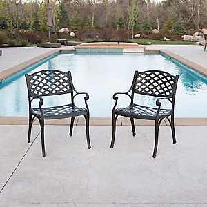 Bronze Cast Aluminum Patio Chairs, Set of 2