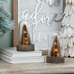 Pre-Lit Cloche Champagne Trees, Set of 2