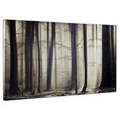 Forest Mist Canvas Art Print