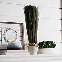 Tall Grass in Terra Cotta Planter, 23 in.