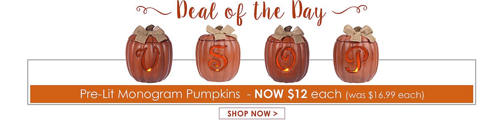 Deal of the Day -  Pre-Lit Monogram Pumpkins Now $12 - Shop Now