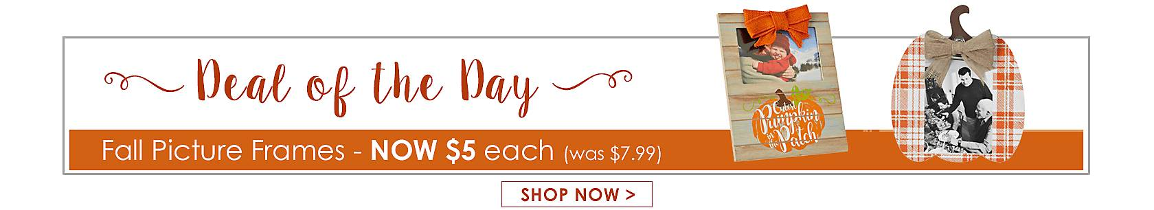 Deal of the Day -  Fall Picture Frames Now $5 - Shop Now