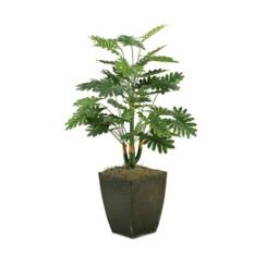 Selloum Philo Plant in Metal Planter, 42 in.