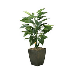 Philo Plant in Metal Planter, 42 in.