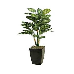 Diffenbachia Plant in Metal Planter, 42 in.