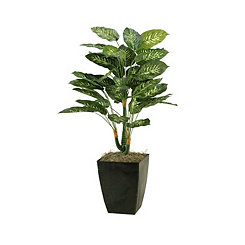 Diffenbachia Plant in Metal Planter, 42 in.