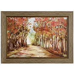 A Sunny Path Framed Art Print