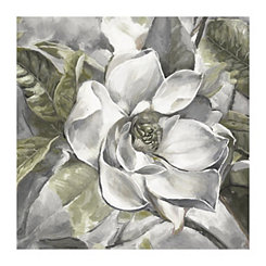 Light Summer Magnolia Canvas Art Print