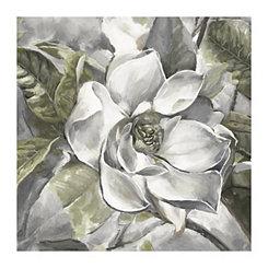 Light Summer Magnolia Canvas Art Print