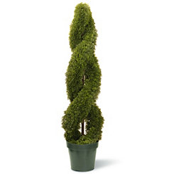 Double Spiral Potted Cedar Tree, 48 in.