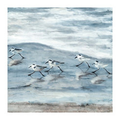 Light Sandpipers Canvas Art Print