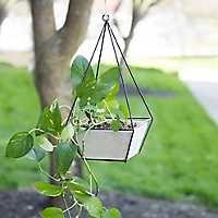Hanging Cement Planter