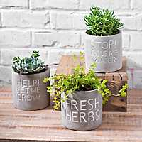 Garden Words Cement Planters