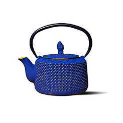 Blue and Gold Cast Iron Matsukasa Teapot