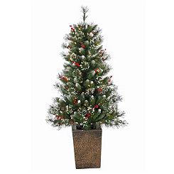 Pre-Lit Glazier Pine Potted Tree