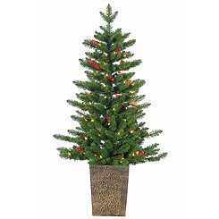 Pre-Lit Madison Spruce Potted Tree