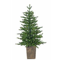 Pre-Lit Akron Pine Potted Tree