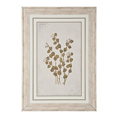 White Country Botanicals Framed Art Print