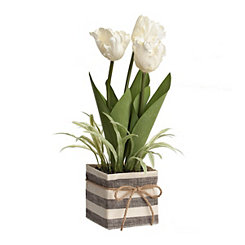 Tulip Arrangement in Striped Planter, 18 in.