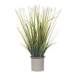 Grass Arrangement in Gray Ceramic Planter, 22 in.