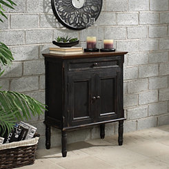 Ariana Black 2-Door Cabinet