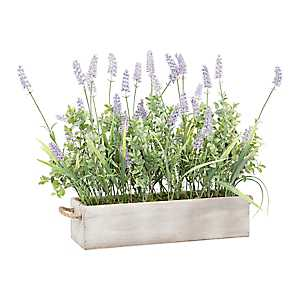 Lavender Arrangement in Wood Planter