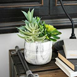 Succulent Arrangement in White Marble Pot