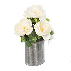 White Roses in Ribbed Zinc Planter