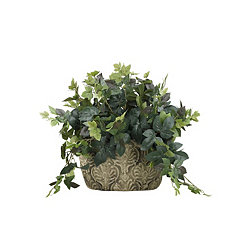 Maple Ivy Arrangement in Ceramic Planter
