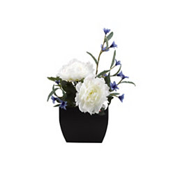 Cream Peony and Blue Wildflower Arrangement