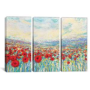 Poppies of Oz Triptych Canvas Art Prints, Set of 3