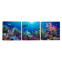 Under the Sea Triptych Canvas Art Prints, Set of 3
