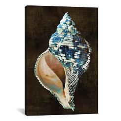 Ocean Treasure II Canvas Art Print