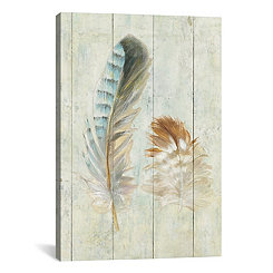 Natural Feathers Canvas Art Print