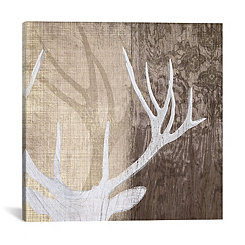 Deer Lodge Canvas Art Print