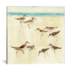 Sandpipers Canvas Art Print