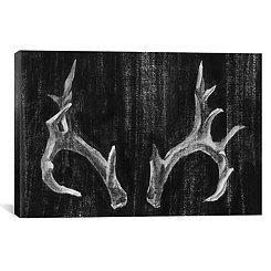 Rustic Antlers Canvas Art Print