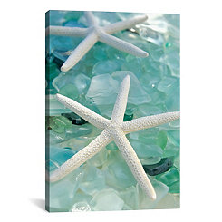 Starfish and Seaglass Canvas Art Print