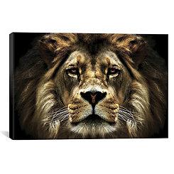 The Lion Canvas Art Print