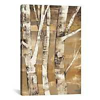 Wandering Through The Birches Canvas Art Print