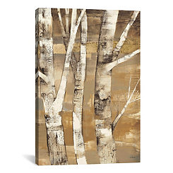 Wandering Through The Birches Canvas Art Print