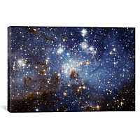 Stellar Nursery Canvas Art Print