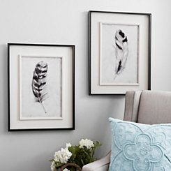Black and White Feather Framed Art Prints