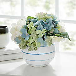 Hydrangea Arrangement in Striped Pot
