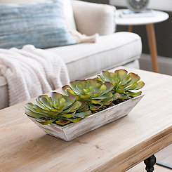 Succulent Arrangement in Whitewashed Planter