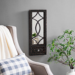 Distressed Black Door Decorative Mirror