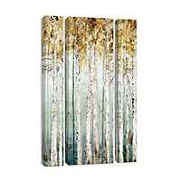 Enlightened Moment Canvas Art Prints, Set of 3
